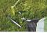 Outwell Flagstaff 5A - Tente - vert